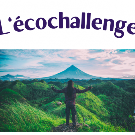 Ecochallenge sur le développement durable, team building en ligne