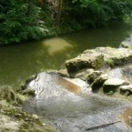 Chasse au trésor environnementale au Bois de Vincennes
