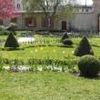 Chasse au trésor au jardin Villemin