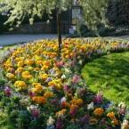 Chasse au trésor au jardin Villemin, Paris